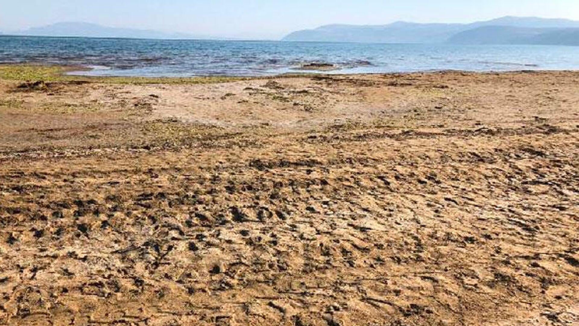 Isparta'da çok şiddetli kuruma tehlikesiyle karşı karşıya olan Eğirdir Gölü'ndeki çekilmeler, 50 metreyi aştı ve iskeleler havada kaldı. - Sputnik Türkiye, 1920, 23.08.2021