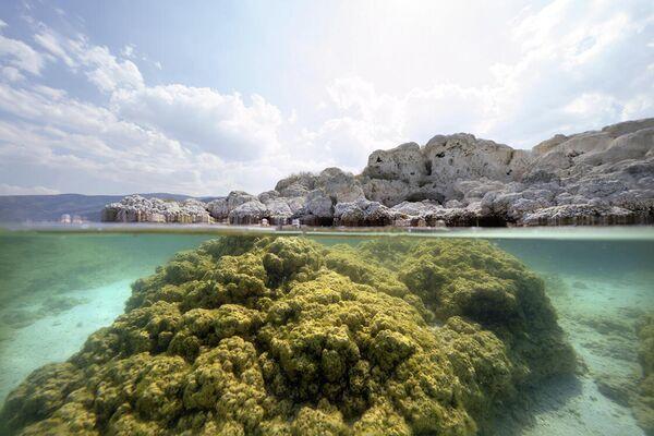 Salda Gölü'nün su altı zenginliği - Sputnik Türkiye