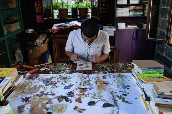 Arkadaşı Ayşe Suna ile tasarımı yapan Damlayıcı, ince dokunuşlarla kuruyan çiçekleri çerçeve içine ekleyerek tabloya dönüştürüyor. - Sputnik Türkiye