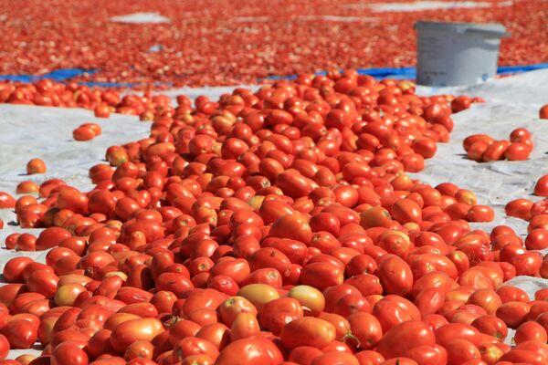 Kurutmalık domateslerle ay yıldızlı Türkiye haritası - Sputnik Türkiye