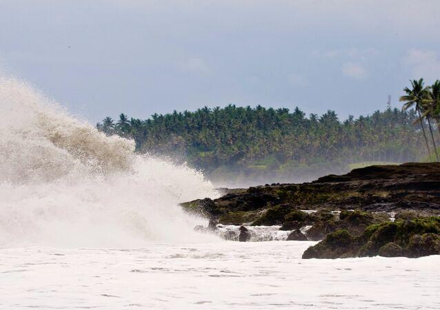 Tsunami dalgası