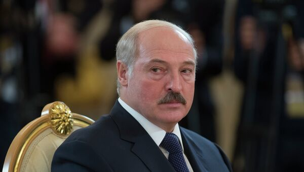 Belarus Cumhuriyeti Devlet Başkanı Lukaşenko - Sputnik Türkiye
