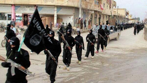 Irak Şam İslam Devleti militanları - Sputnik Türkiye
