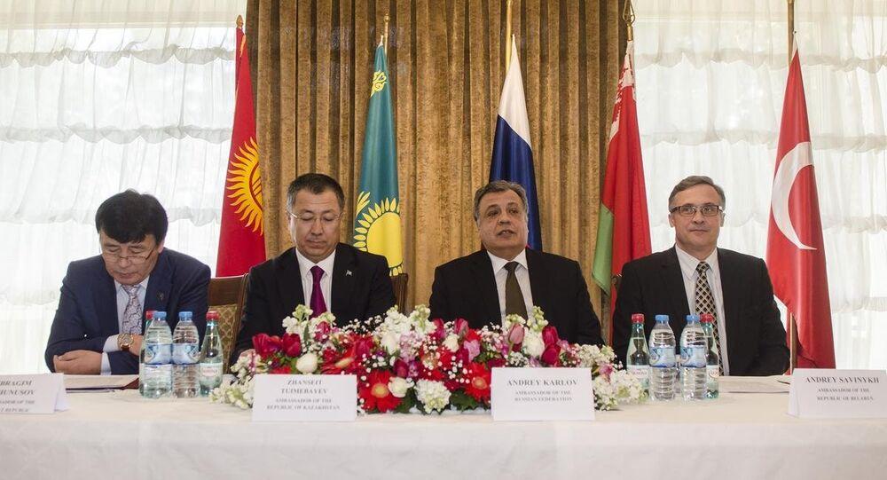 Avrasya Ekonomik İşbirliği toplantısı