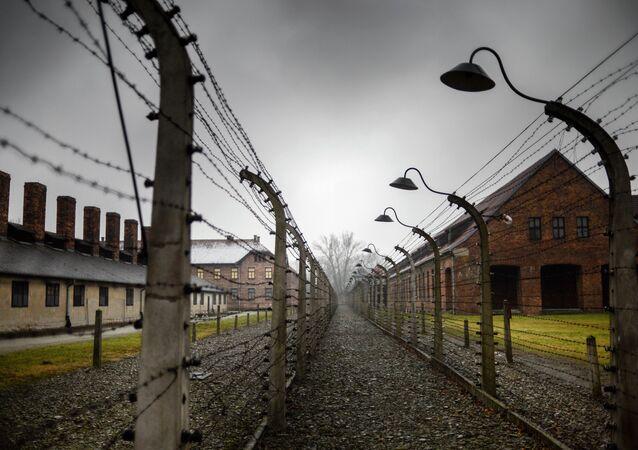 Auschwitz Toplama Kampı