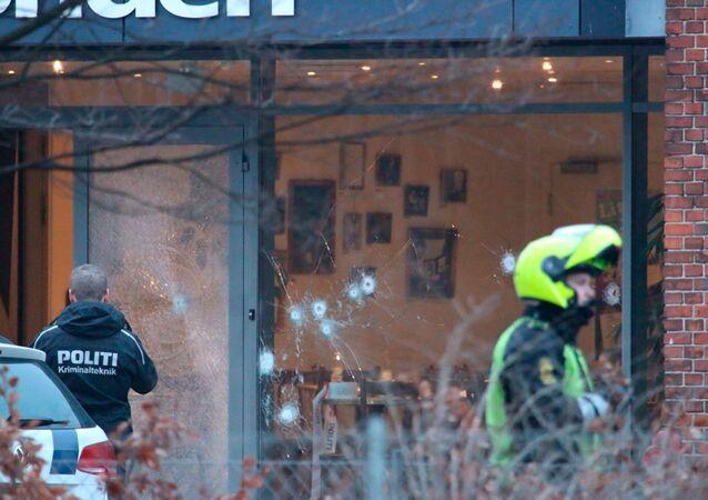 Danimarka'da Charlie Hebdo toplantısına saldırı
