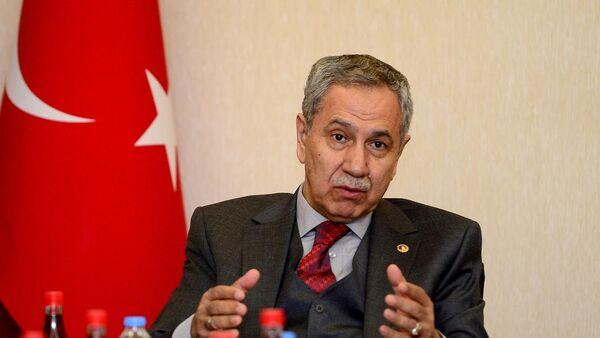 Başbakan Yardımcısı Bülent Arınç - Sputnik Türkiye