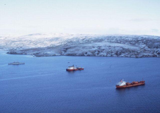Falkland Adaları