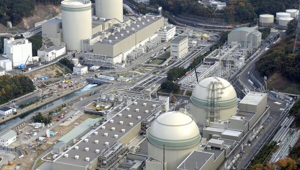 Fukuşima nükleer santrali - Sputnik Türkiye