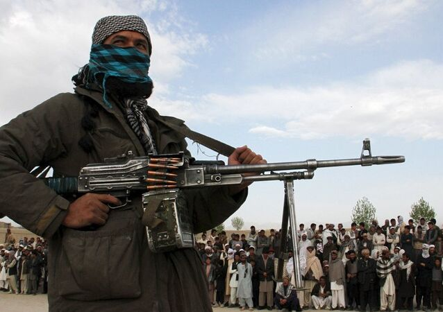Afganistan'da Taliban militanı