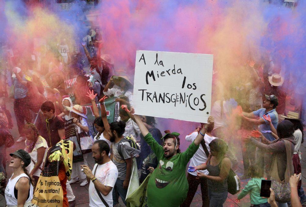 """Meksika'da GDO'nun doğaya ve insan sağlığına verdiği zararlara dikkat çekmek ve yasaklanmasını sağlamak amacıyla yapılan """"Monsanto'ya Karşı Yürüyüş"""""""