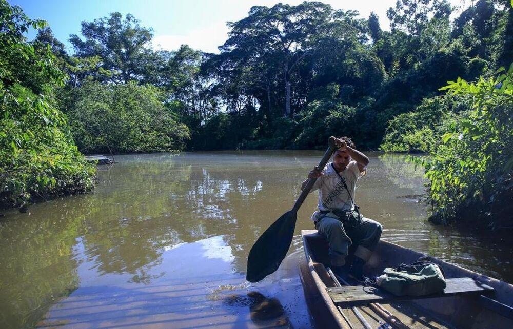 Peru'yu ziyaret edip, turistik etkinlikler ve tarihi ziyaretlerin yerine vahşi doğa ile baş başa kalmak isteyen turistlerin imdadına Amazon ormanları yetişiyor.
