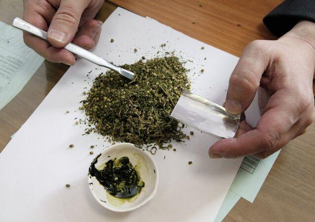Esrar, marihuana, uyuşturucu