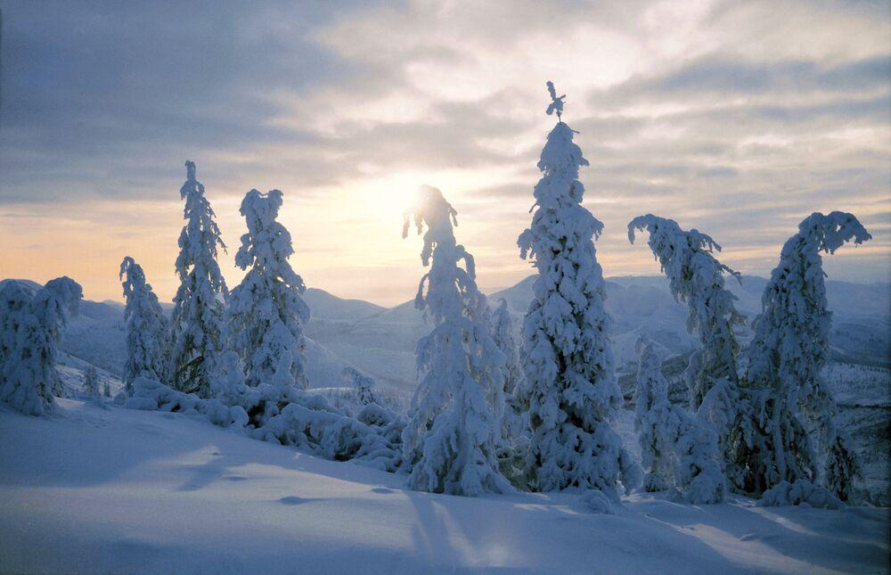 Yakutisan oramnları kış manzarası