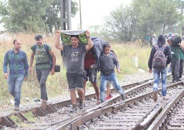 Makedonya sınırında kaçakların Avrupa yürüyüşü