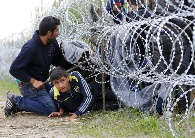 Sırbistan - Macaristan - Sınır - Göçmen