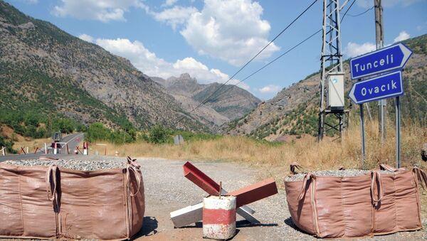 Tunceli'de PKK'ya hava destekli operasyon - Sputnik Türkiye