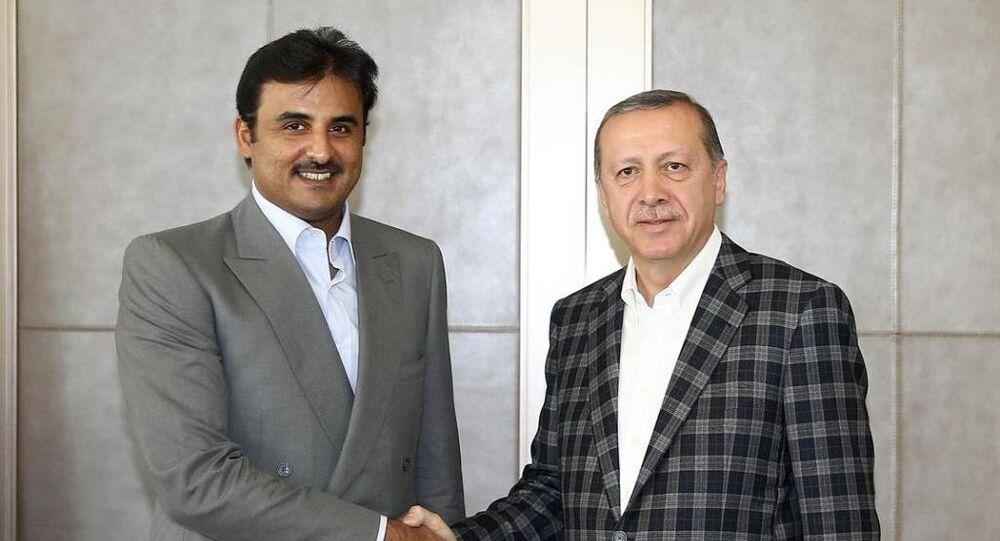 Cumhurbaşkanı Recep Tayyip Erdoğan, İstanbul'da Katar Emiri Şeyh Temim Bin Hamed Al Sani ile görüştü.