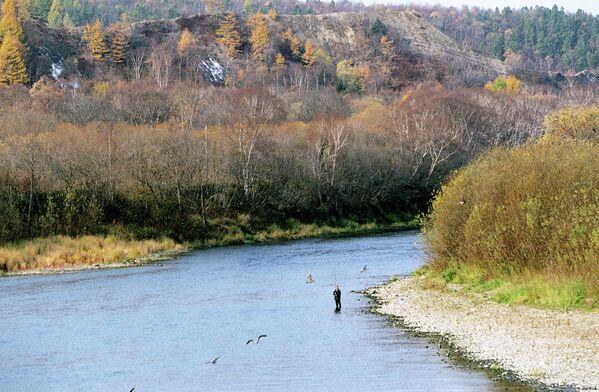 Sahalin adasında Lutoga nehri. - Sputnik Türkiye