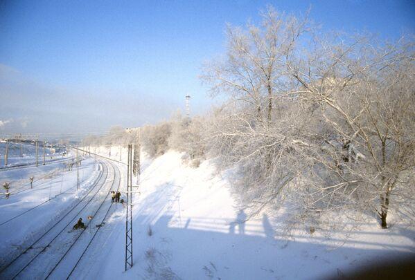 Trans sibirya demiryolu kış manzarası. - Sputnik Türkiye