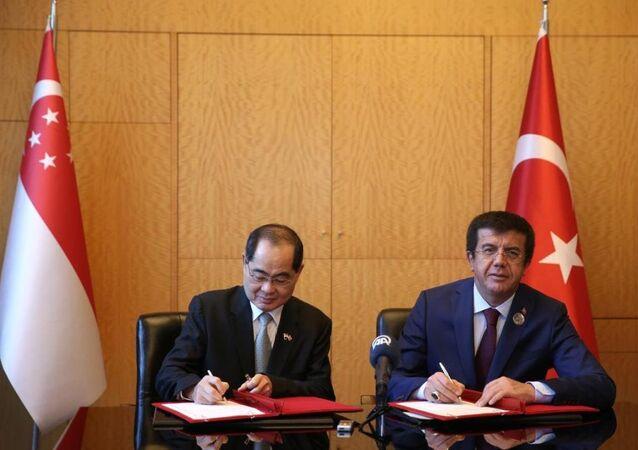 Ekonomi Bakanı Nihat Zeybekci (sağda) ile Singapur Ticaret ve Sanayi Bakanı Lim Hng Kiang (solda)