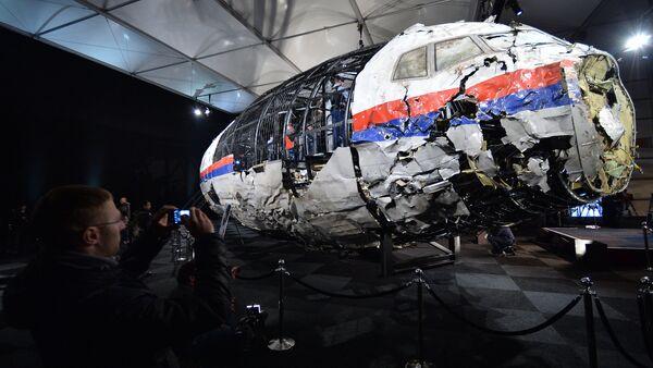 Hollanda, Malezya Hava Yolları'na ait MH17 sefer sayılı yolcu uçağı ile ilgili raporunu açıkladı - Sputnik Türkiye