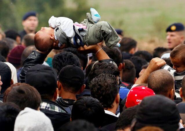 Sırbistan - Hırvatistan sınırında göçmenler