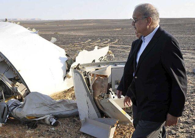 Mısır Başbakanı Şerif İsmail uçağın enkazının olduğu alana gitti.