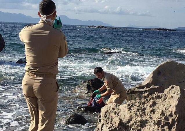 Minik Sena'nın cansız bedeni kıyıya vurdu
