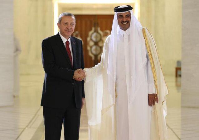 Cumhurbaşkanı Recep Tayyip Erdoğan ve  Katar Emiri Şeyh Tamim Bin Hamad Al Thani