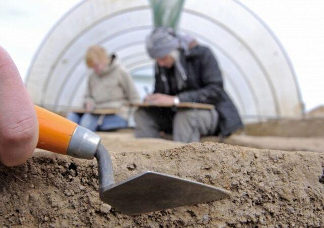 Rusya'da 70 milyon yıl önce yaşamış fil kuşu bulundu