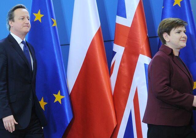 İngiltere Başbakanı David Cameron ve Polonya Başbakanı Beata Szydlo