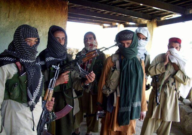 Pakistan Talibanı