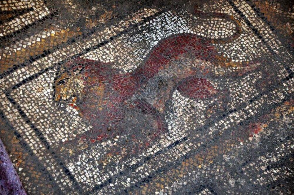 Roma dönemine ait mozaik bulundu