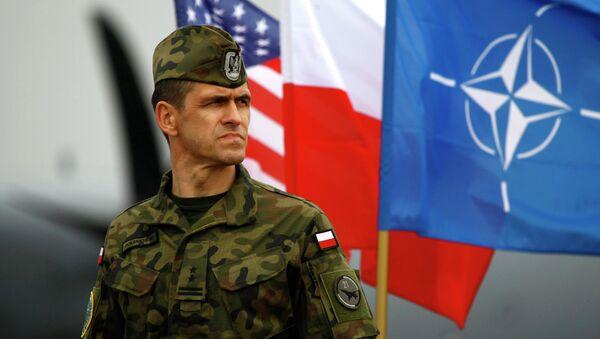 Polonya ve NATO bayraklarının yanında duran bir Polonya askeri - Sputnik Türkiye
