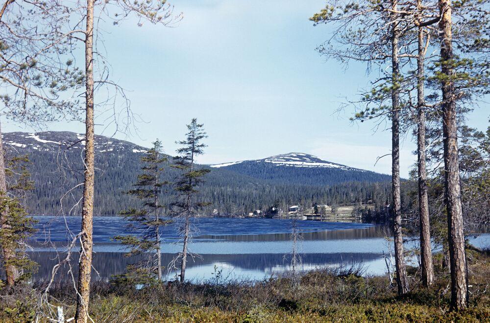 Murmansk bölgesindeki Çuna Gölü