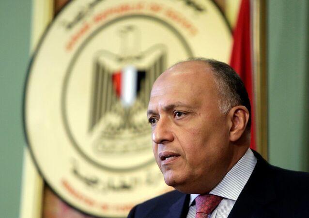 Mısır Dışişleri Bakanı Semih Şükrü