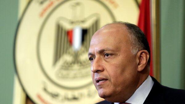 Mısır Dışişleri Bakanı Semih Şükrü - Sputnik Türkiye