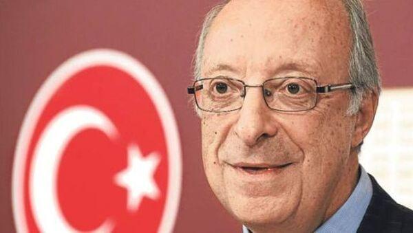 Rıza Türmen - Sputnik Türkiye