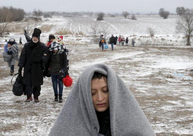 Sığınmacı- Avusturya