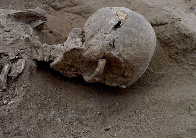 İnsanlık tarihindeki savaşlara dair en eski kanıt Kenya'da bulundu.