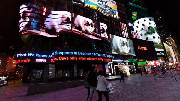 Times Meydanı, 'kedi istilası' altında - Sputnik Türkiye