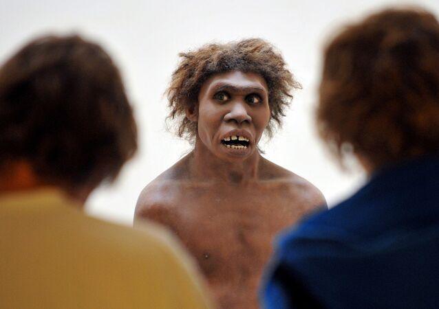 Eyzies-de-Tayac, Dordogne'da sergilenen Neandertal modeli