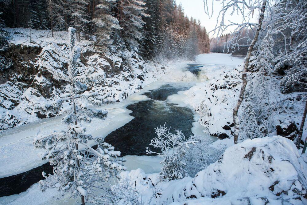 Karelya Cumhuriyeti'ndeki Kivaç şelalesi.