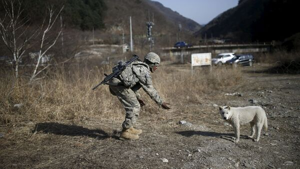 Güney Kore ve ABD'den askeri tatbikat - Sputnik Türkiye