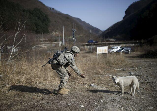 Güney Kore ve ABD'den askeri tatbikat
