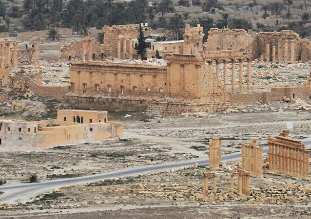 Palmira operasyon