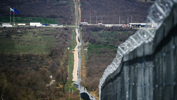 Türkiye - Bulgaristan sınırı - Sputnik Türkiye