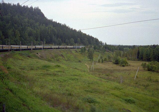 Rusya boyunca uzanan Trans Sibirya tren yolu, 9 bin 289 kilometre uzunluğuyla dünyanın en uzunu.  Moskova'dan başlayan bu tren yolu, Asya içinde ilerliyor ve Vladivostok limanında sona eriyor. Bu tren yolunda yolculuk toplan 152 saat 27 dakika sürüyor. 1916 yılında inşa edilen yol, yıllar geçtikçe uzatılıyor.