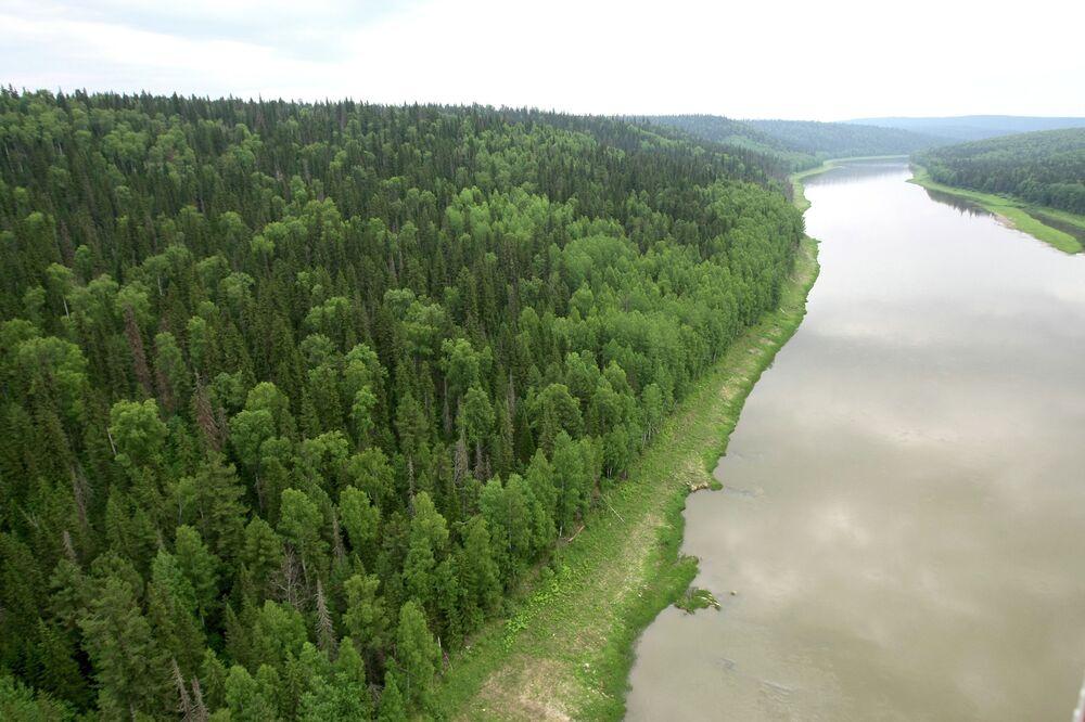 Rusya, dünyada en çok ormanlık araziye sahip ülke. Rusya'da ormanlar ülke yüz ölçümünün yüzde 45'ini oluşturuyor ve 7 milyon 762 bin 602 kilometre karelik bir alanı kapsıyor. Rusya'daki ormanlık arazilerin büyüklüğü Avustralya kıtasıyla aynı.
